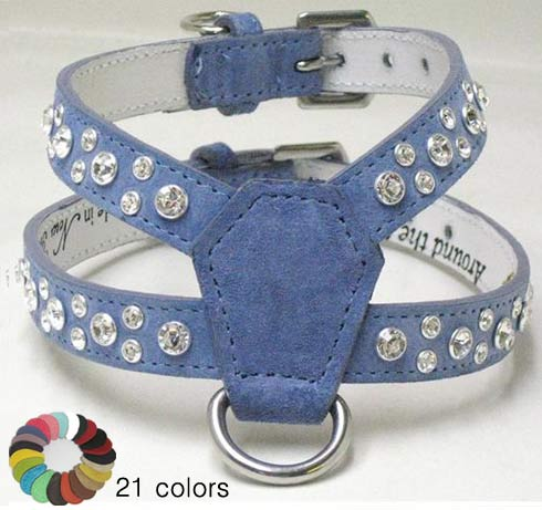 Around the Collar Dog Collar and Leash collection