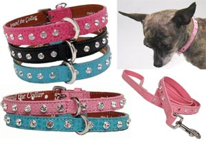 Swarovsky Crystal Dog Collar and Leash