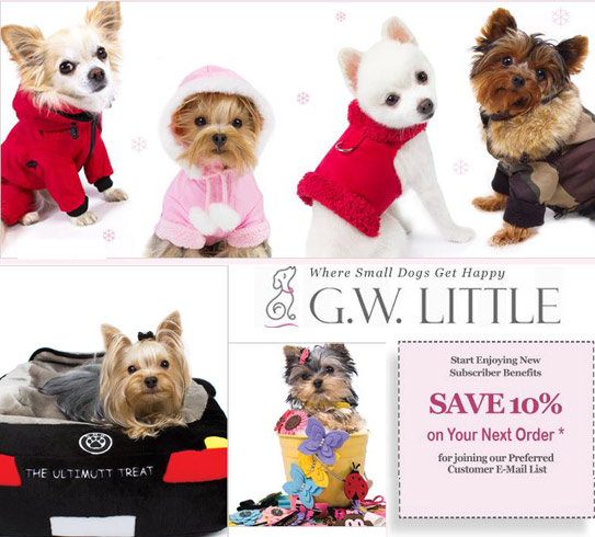 small dogs dog clothing supplies and accessories
