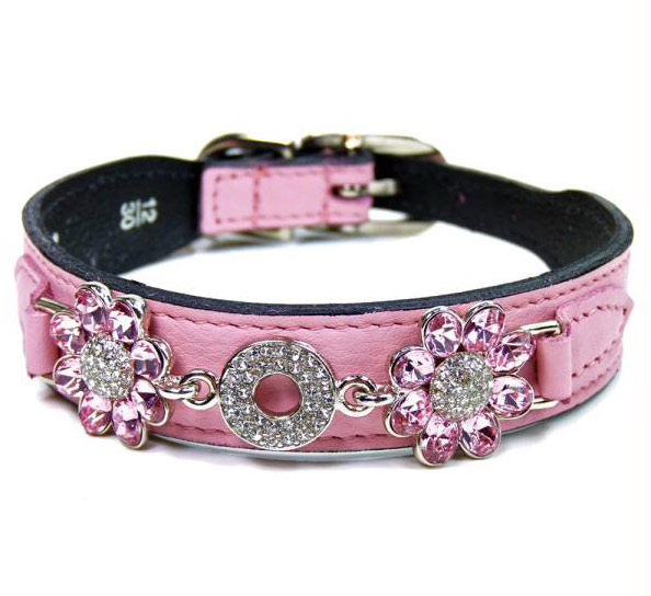 designer dog collars - photo #47