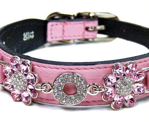 Pink Gucci Dog Collar