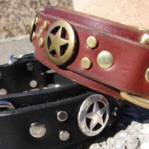 paco dog collar griffin