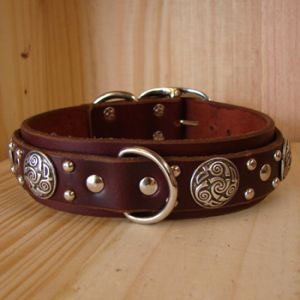 paco dog collar gunther