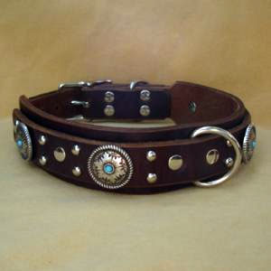 paco dog collar mesa
