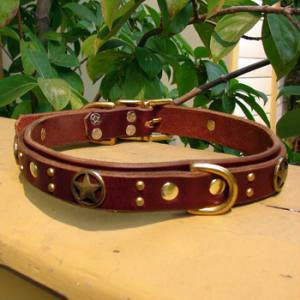 paco dog collar pandora