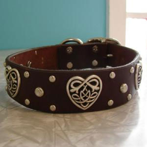 paco dog collar Sybyl Lilly Valentine