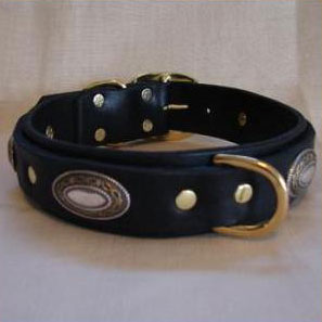 paco dog collar cash