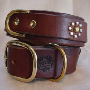 paco dog collar eva