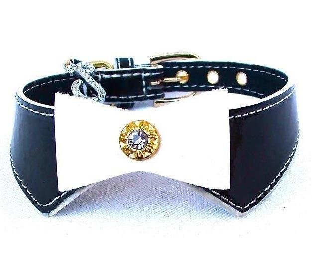 Collars 4 Dogs Uk Puchi Dog Collars Amp Leads
