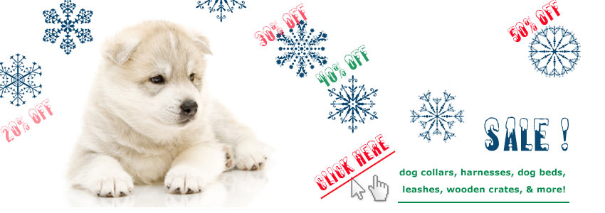 dog collars and accessories on christmas sale