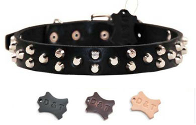 Dog Collar Leather Star Conchos 3 Color Assortment