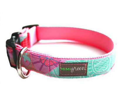Girl dog collars and leashes, smartest dog breeds pit bull