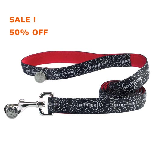 cheap bad to the bone dog leash or lead, sale