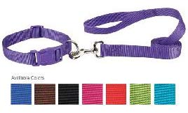 cheap fashion colors nylon dog collars and leads