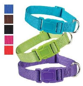 cheap fashion colors nylon dog collars
