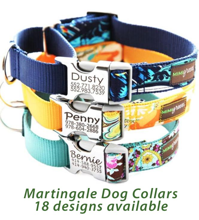 Dog Collar With Engravable Buckle